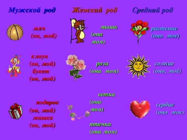 растение (оно мое)  ветка (она моя)  птичка (она моя)  мышь (она моя) Женский род Мужской род Средний род  мяч  (он, мой)   клоун  (он, мой)  букет  (он, мой)  роза  солнце  (оно, моё) (она моя)  подарок  (он, мой)  мишка  (он, мой)  сердце  (оно мое)