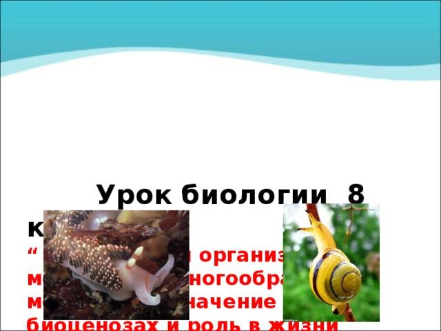 """Урок б иологии 8 класс  """" Особенности организации моллюсков. Многообразие моллюсков. Значение в биоценозах и роль в жизни человека """"  Государственное бюджетное образовательное учреждение  Луганской народной республики  « УЧЕБНО-ВОСПИТАТЕЛЬНЫЙ КОМПЛЕКС  № 8» Г. СТАХАНОВА  У ЧИТЕЛЬ БИОЛОГИИ , УЧИТЕЛЬ ВЫСШЕЙ КАТЕГОРИИ, «УЧИТЕЛЬ – МЕТОДИСТ»  РЯБЦЕВА МАРИНА АЛЕКСАНДРОВНА"""