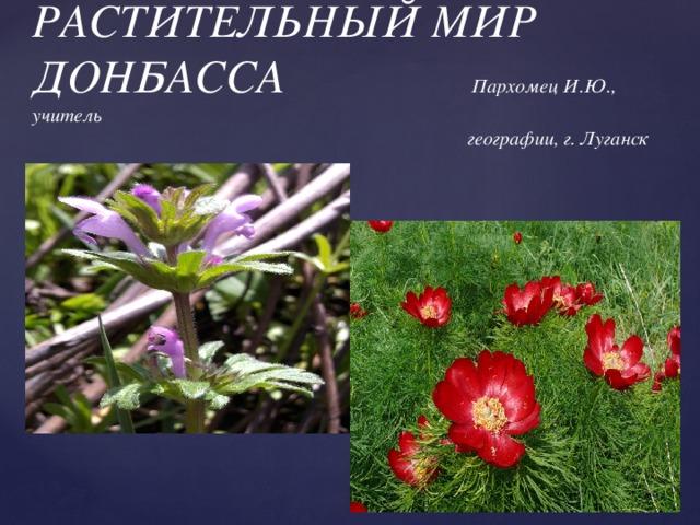 РАСТИТЕЛЬНЫЙ МИР ДОНБАССА Пархомец И.Ю., учитель  географии, г. Луганск