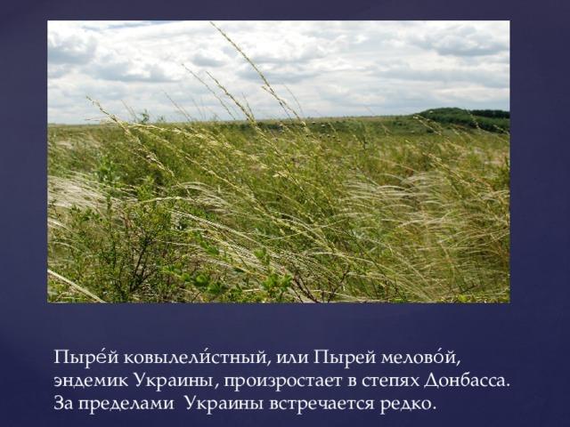 Пыре́й ковылели́стный, или Пырей мелово́й, эндемик Украины, произростает в степях Донбасса. За пределами Украины встречается редко.