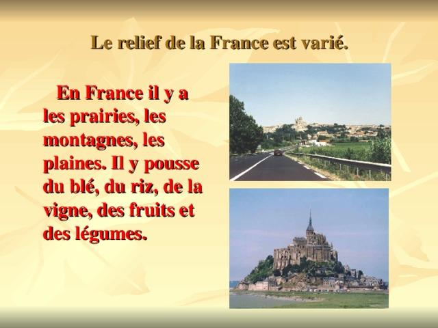 Le relief de la France est vari é.  En France il y a les prairies, les montagnes, les plaines. Il y pousse du bl é, du riz, de la vigne, des fruits et des légumes.