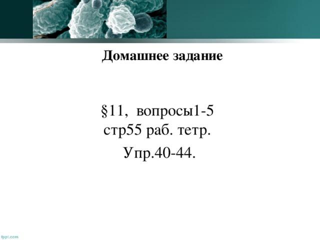 Домашнее задание §11, вопросы1-5 стр55 раб. тетр.  Упр.40-44.