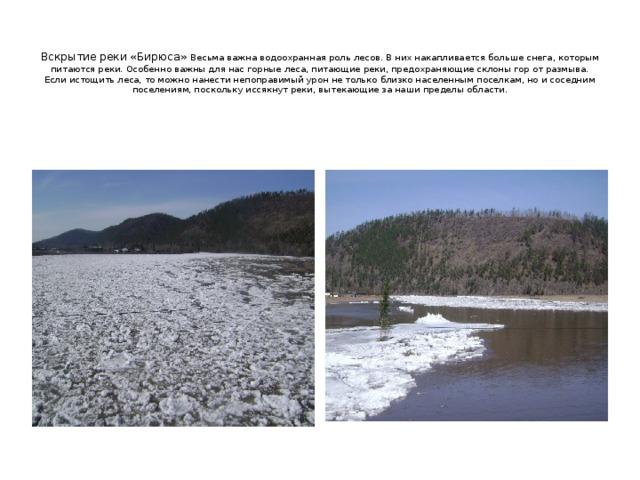 Вскрытие реки «Бирюса» Весьма важна водоохранная роль лесов. В них накапливается больше снега, которым питаются реки. Особенно важны для нас горные леса, питающие реки, предохраняющие склоны гор от размыва. Если истощить леса, то можно нанести непоправимый урон не только близко населенным поселкам, но и соседним поселениям, поскольку иссякнут реки, вытекающие за наши пределы области.
