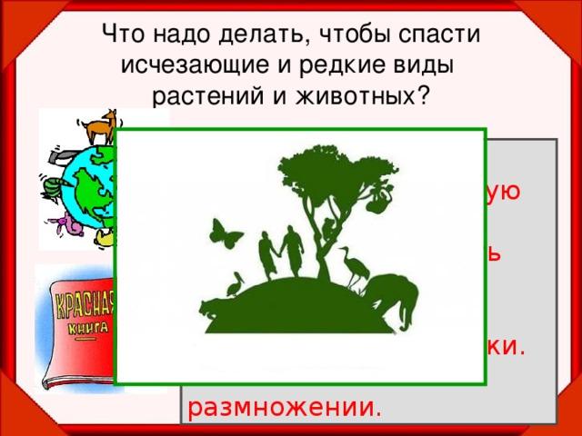 Что надо делать, чтобы спасти исчезающие и редкие виды  растений и животных? Запретить охоту. Запретить чрезмерную  добычу животных. Запретить разрушать  места обитания животных.