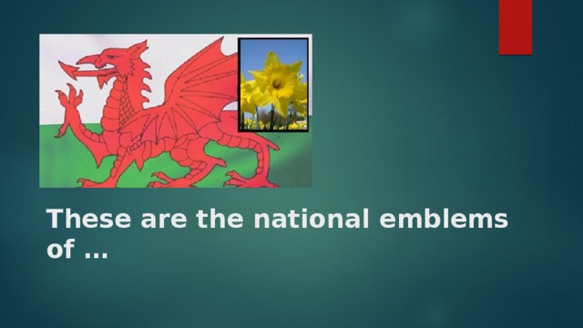 These are the national emblems of …