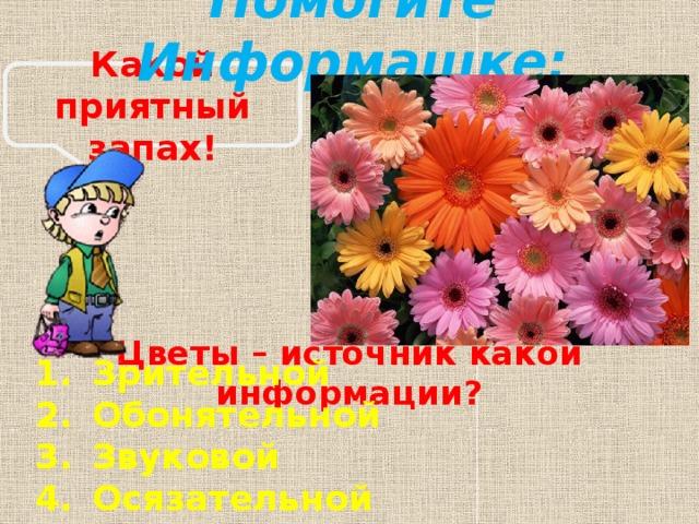 Помогите Информашке: Какой приятный запах! Цветы – источник какой информации?