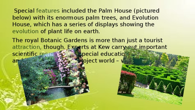Special features included the Palm House (pictured below) with its enormous palm trees, and Evolution House, which has a series of displays showing the evolution of plant life on earth. The royal Botanic Gardens is more than just a tourist attraction, though. Experts at Kew carry out important scientific research , run special education programmes, and help conservation project world – wide.
