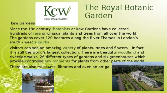 The Royal Botanic Garden  kew Gardens Since the 18 th century, botanists at Kew Gardens have collected hundreds of rare or unusual plants and trees from all over the world. The gardens cover 120 hectares along the River Thames in London's south – west suburbs. visitors can see an amazing variety of plants, trees and flowers – in fact, it is still the world's largest collection. There are beautiful woodland and riverside walks, 26 different types of gardens and six greenhouses which provide controlled environments for plants from other parts of the world. There are also museums, libraries and even an art gallery.