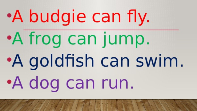 A budgie can fly. A frog can jump. A goldfish can swim. A dog can run.
