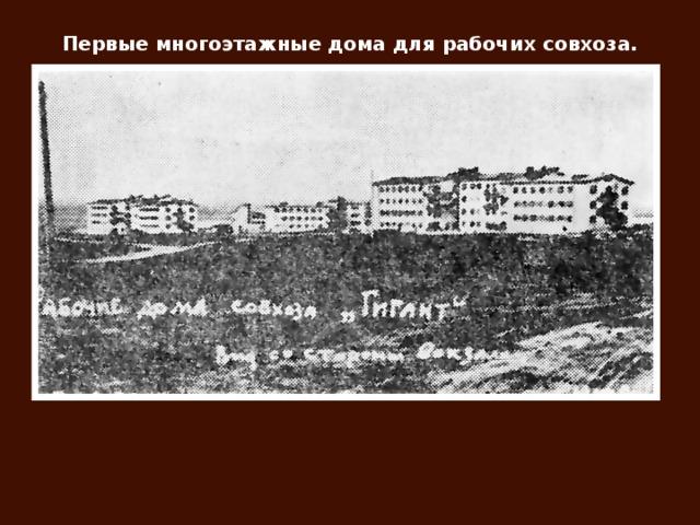 Первые многоэтажные дома для рабочих совхоза.