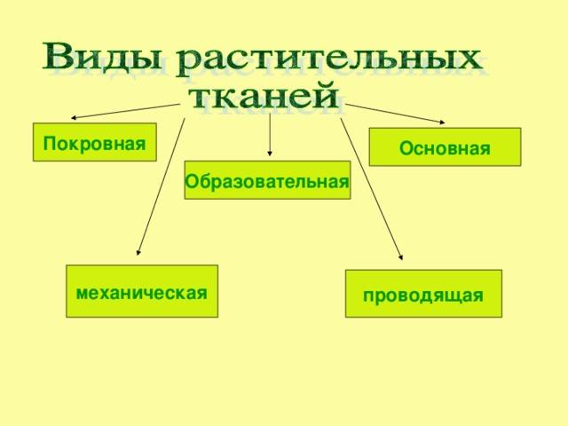 Покровная Основная Образовательная механическая проводящая