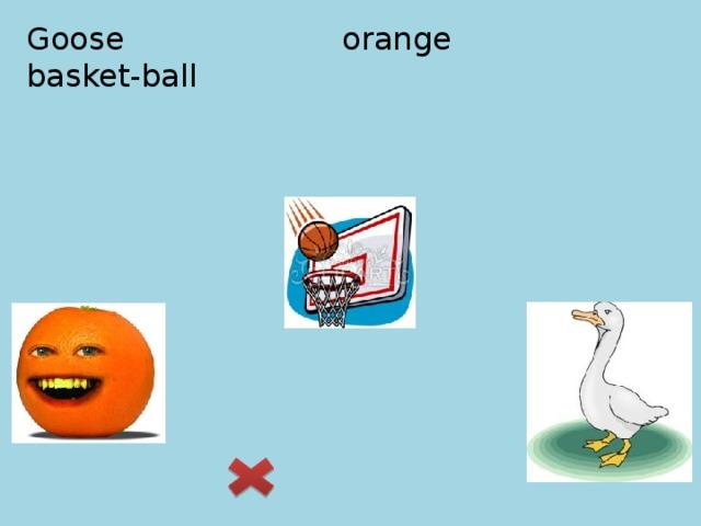 Goose orange basket-ball