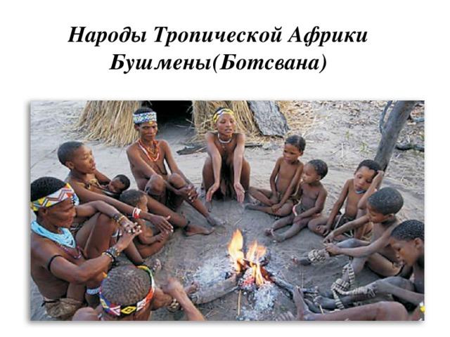 Народы Тропической Африки  Бушмены(Ботсвана)