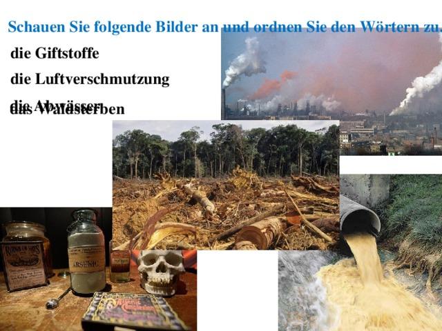 Schauen Sie folgende Bilder an und ordnen Sie den Wörtern zu. die  Giftstoffe die Luftverschmutzung die Abwässer das Waldsterben