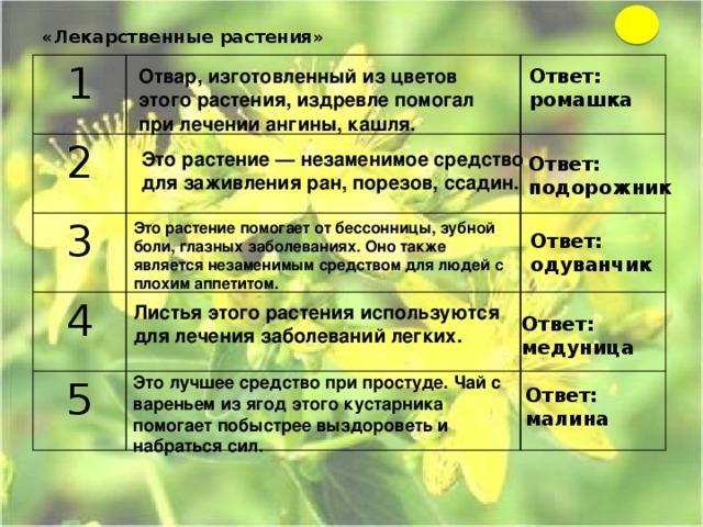 «Лекарственные растения»   1  2   3    4   5    Отвар, изготовленный из цветов этого растения, издревле помогал при лечении ангины, кашля. Ответ: ромашка Это растение — незаменимое средство для заживления ран, порезов, ссадин. Ответ: подорожник Это растение помогает от бессонницы, зубной боли, глазных заболеваниях. Оно также является незаменимым средством для людей с плохим аппетитом. Ответ: одуванчик Листья этого растения используются для лечения заболеваний легких. Ответ: медуница Это лучшее средство при простуде. Чай с вареньем из ягод этого кустарника помогает побыстрее выздороветь и набраться сил. Ответ: малина