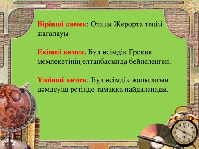 Бірінші көмек : Отаны Жерорта теңізі жағалауы Екінші көмек. Бұл өсімдік Грекия мемлекетінің елтаңбасында бейнеленген. Үшінші көмек : Бұл өсімдік жапырағын дәмдеуіш ретінде тамаққа пайдаланады.