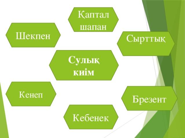Шапан Күпі Сырттық киім Шидем Тон