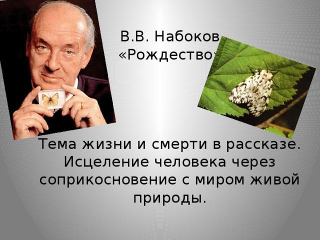 В.В. Набоков  «Рождество»      Тема жизни и смерти в рассказе.  Исцеление человека через соприкосновение с миром живой природы.