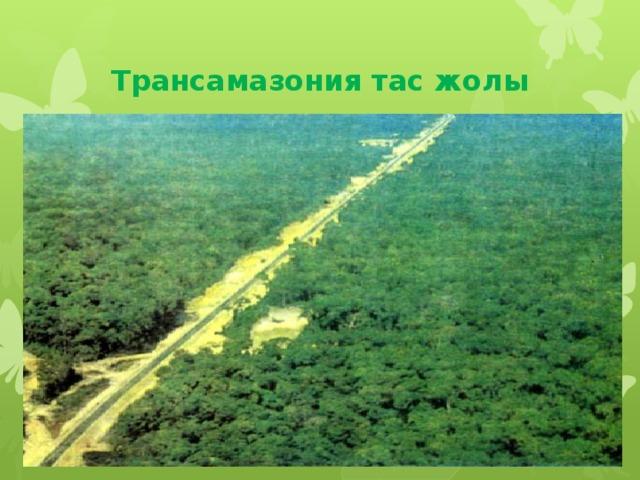 Трансамазония тас жолы
