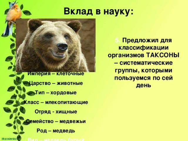 Вклад в науку: 5. Предложил для классификации организмов ТАКСОНЫ – систематические группы, которыми пользуемся по сей день Империя – клеточные Царство – животные Тип – хордовые Класс – млекопитающие Отряд - хищные Семейство – медвежьи Род – медведь Вид – медведь бурый