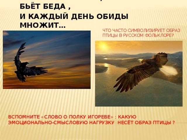 Вот срок настал , Крылами бьёт беда , И каждый день обиды множит… Что часто символизирует образ птицы в русском фольклоре? Вспомните «слово о полку игореве» : какую эмоционально-смысловую нагрузку несёт образ птицы ?