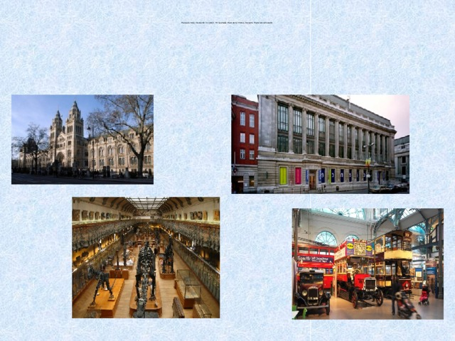 There are many museums in London. For example, the Natural History Museum, the Science Museum.