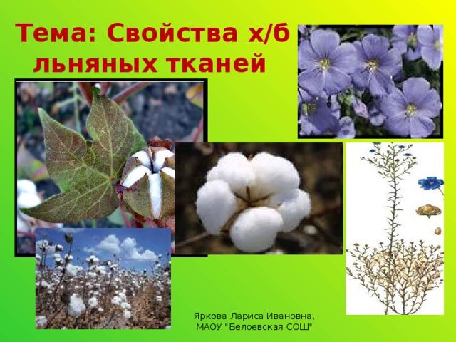 Тема: Свойства х/б и льняных тканей Яркова Лариса Ивановна, МАОУ