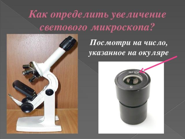 Как определить увеличение светового микроскопа? Посмотри на число, указанное на окуляре