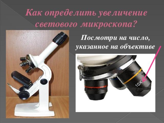 Как определить увеличение светового микроскопа? Посмотри на число, указанное на объективе