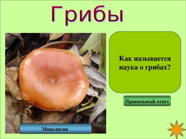 Как называется наука о грибах? Правильный ответ Микология