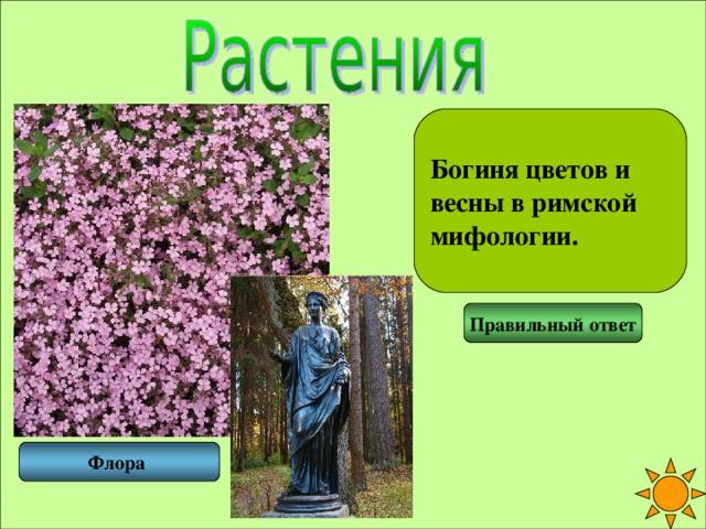 Богиня цветов и весны в римской мифологии. Правильный ответ Флора