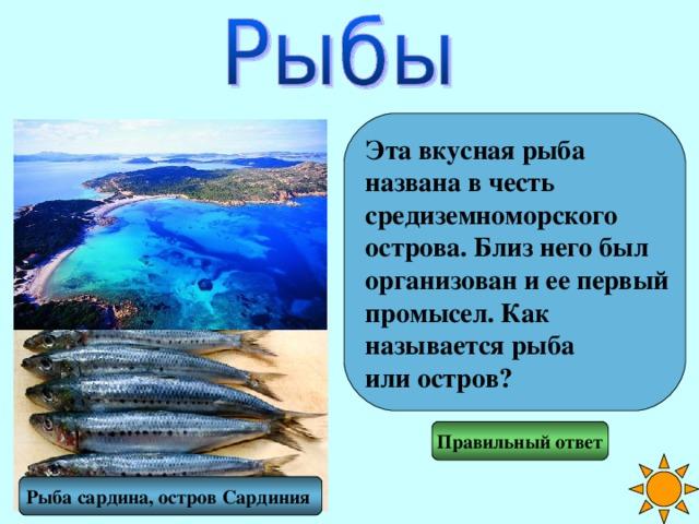 Эта вкусная рыба названа в честь средиземноморского острова. Близ него был организован и ее первый промысел. Как называется рыба или остров? Правильный ответ Рыба сардина, остров Сардиния