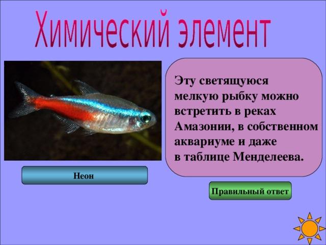 Эту светящуюся мелкую рыбку можно встретить в реках Амазонии, в собственном аквариуме и даже в таблице Менделеева. Неон Правильный ответ