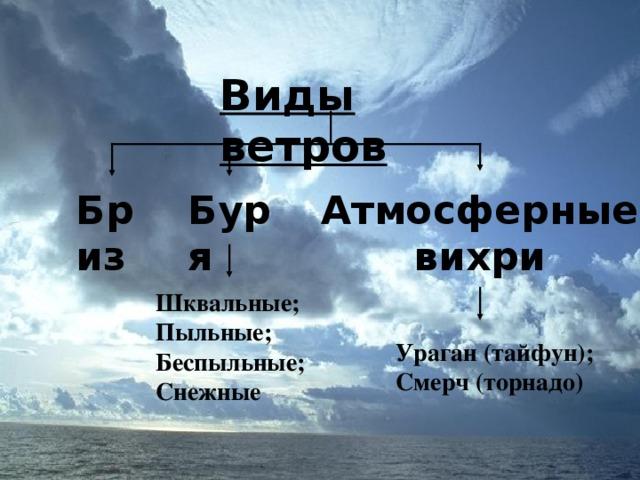 Виды ветров Бриз Буря Атмосферные вихри Шквальные; Пыльные; Беспыльные; Снежные Ураган (тайфун); Смерч (торнадо)