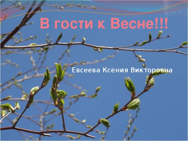 В гости к Весне!!! Евсеева Ксения Викторовна
