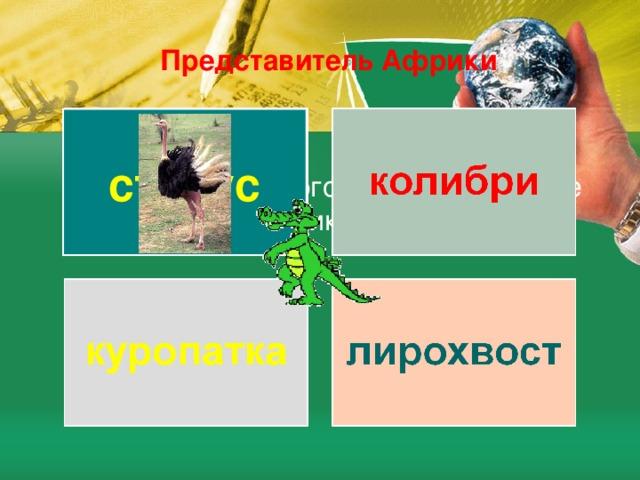Представитель Африки страус Из предложенного списка, выберите обитателей Африки
