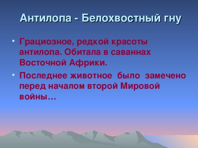 Антилопа - Белохвостный гну