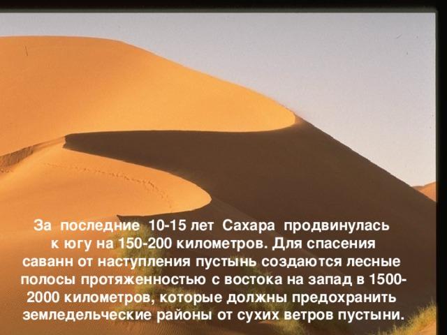За последние 10-15 лет Сахара продвинулась  к югу на 150-200 километров. Для спасения саванн от наступления пустынь создаются лесные полосы протяженностью с востока на запад в 1500- 2000 километров, которые должны предохранить земледельческие районы от сухих ветров пустыни.