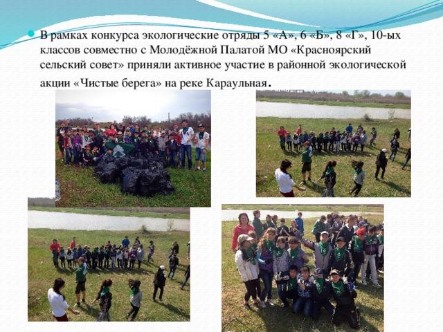 В рамках конкурса экологические отряды 5 «А», 6 «Б», 8 «Г», 10-ых классов совместно с Молодёжной Палатой МО «Красноярский сельский совет» приняли активное участие в районной экологической акции «Чистые берега» на реке Караульная .