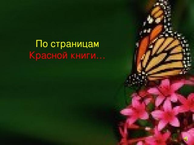 По страницам Красной книги…