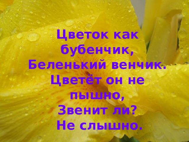 Цветок как бубенчик, Беленький венчик. Цветёт он не пышно, Звенит ли?  Не слышно.