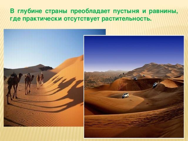В глубине страны преобладает пустыня и равнины, где практически отсутствует растительность.