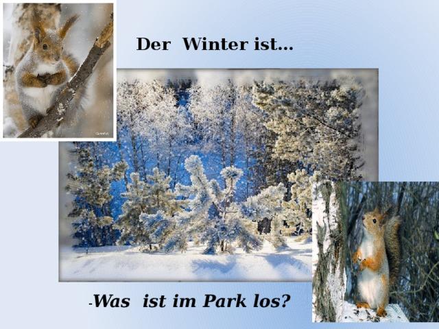 Der Winter ist… - Was ist im Park los?