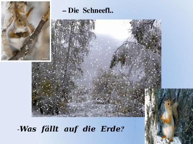 – Die Schneefl.. - Was fӓllt auf die Erde ?
