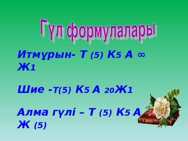 Итмұрын- Т (5) К 5 А ∞ Ж 1  Шие - Т(5) К 5 А 20 Ж 1  Алма гүлі – Т (5) К 5 А ∞ Ж (5)