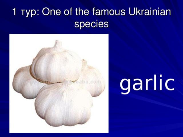 1 тур: One of the famous Ukrainian species garlic