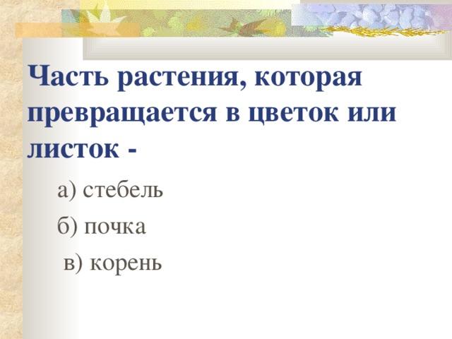 Часть растения, которая превращается в цветок или листок - а) стебель б) почка  в) корень