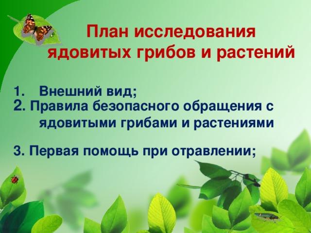 План исследования ядовитых грибов и растений Внешний вид;  2 . Правила безопасного обращения с ядовитыми грибами и растениями 3. Первая помощь при отравлении;