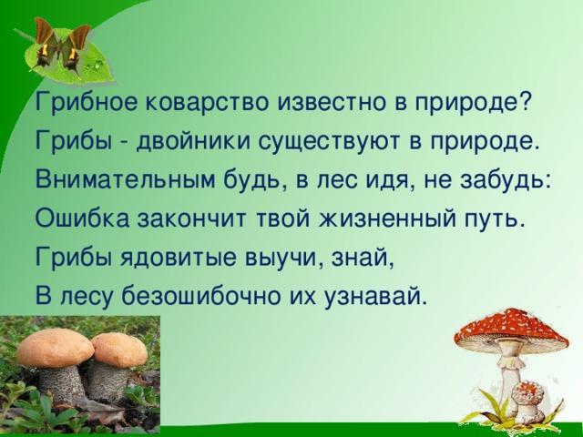 Грибное коварство известно в природе? Грибы - двойники существуют в природе. Внимательным будь, в лес идя, не забудь: Ошибка закончит твой жизненный путь. Грибы ядовитые выучи, знай, В лесу безошибочно их узнавай.