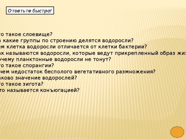 Ответьте быстро!